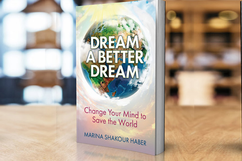 http://dreamabetterdreamnow.com/aboutbook-2/